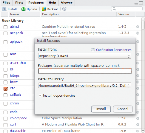 R Package Manager